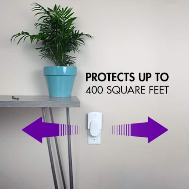 This powerful trap offers up to 400 square feet of protection.