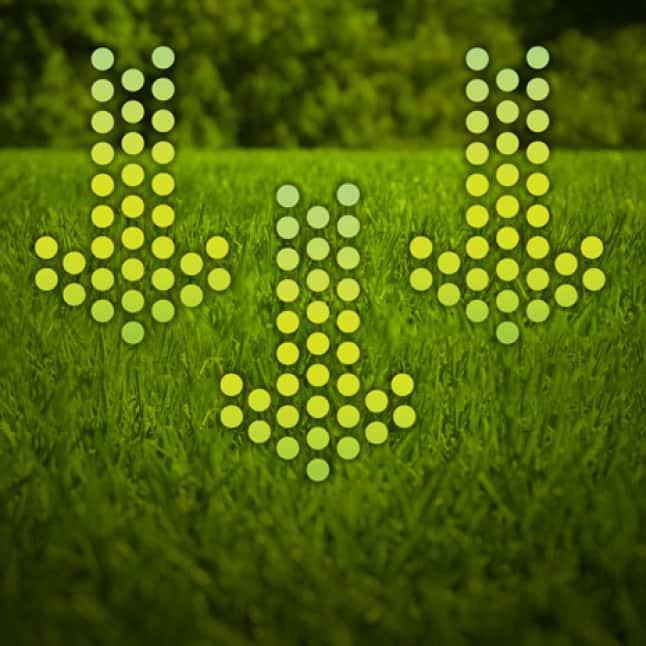 Lawn Vitamins