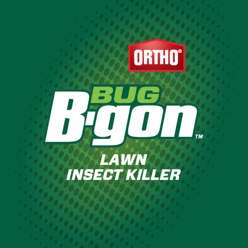 Ortho Bug B-gon Lawn Insect Killer. Kills insects by contact