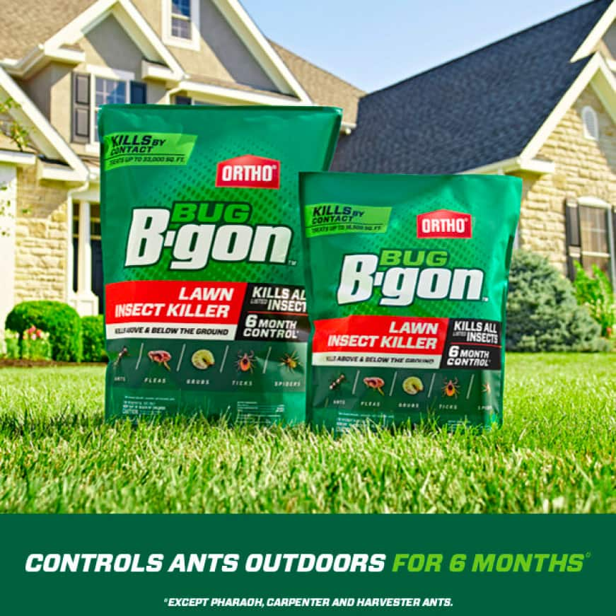 Controls ants outdoors for 6 months (except pharaoh, carpenter and harvester ants)