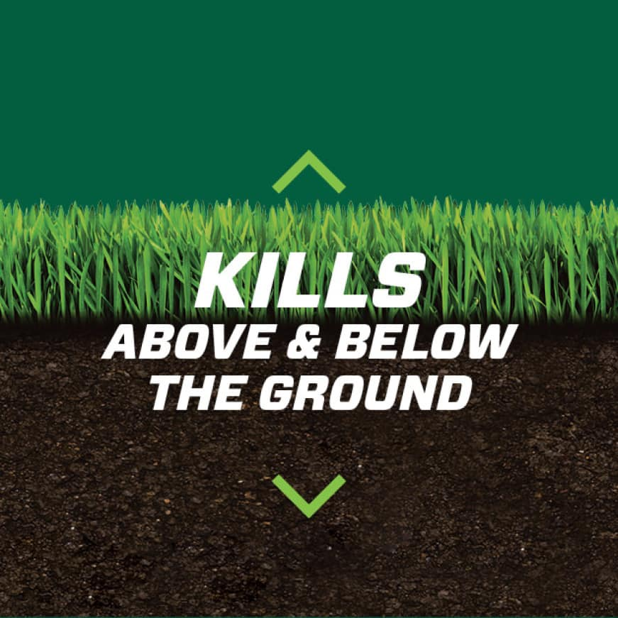 Kills above and below the ground