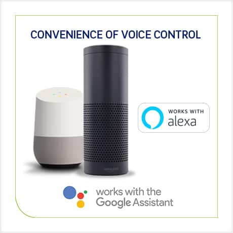 Works with Alexa and Google Assistant