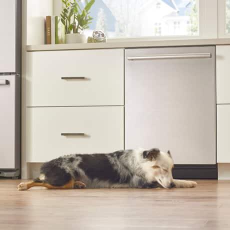 Bosch quiet dishwasher infolight 50dBA