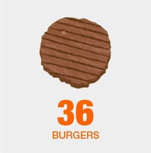 Burger Capacity