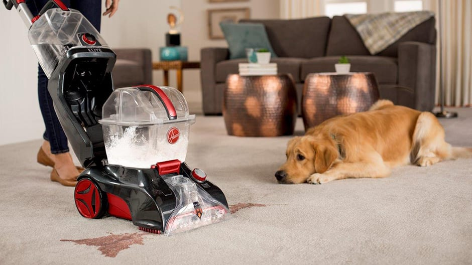 A woman using the Power Scrub Elite Pet Plus Carpet Cleaner showing the quick clean mode feature with a dog watching near by.
