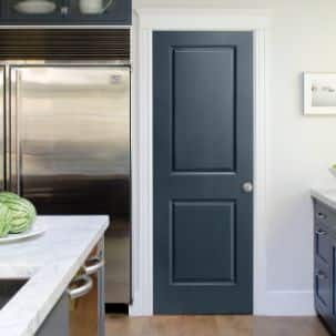 Masonite 2 Panel Interior Molded Door