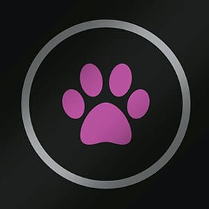 Icon for perfect for pets.