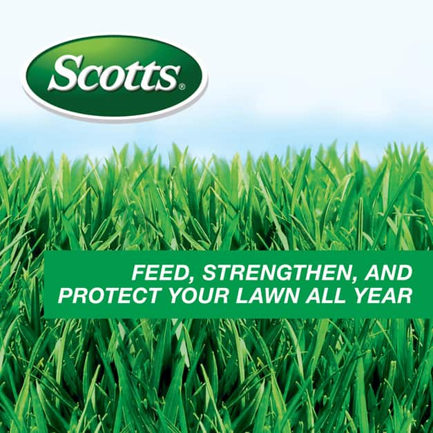 Feed, Strengthen, and Protect Your Lawn All Year