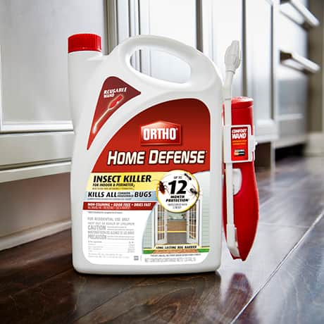 Ortho Home Defense Insect Killer Container in Kitchen Interior
