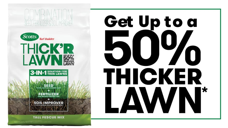 Get up to a 50% thicker lawn subject to proper care results may vary based on current condition of lawn