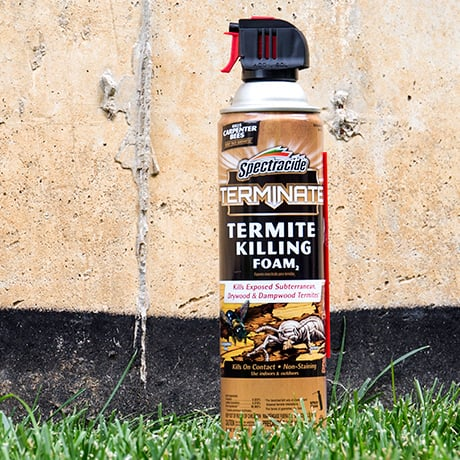 Spectracide Terminate Termite Killing Foam