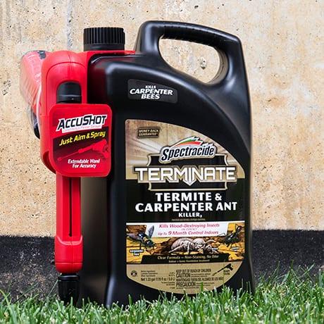 Spectracide Terminate Termite and Carpenter Ant Killer AccuShot