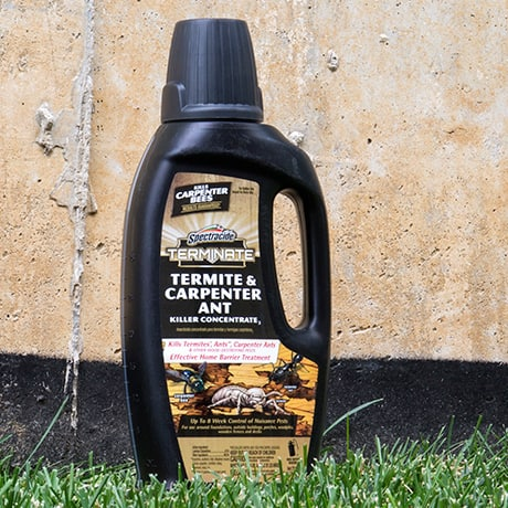 Spectracide Terminate Termite and Carpenter Ant Killer Concentrate