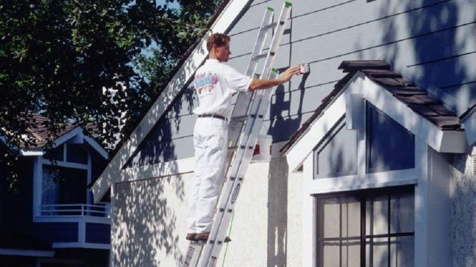 Professional painter on extension ladder