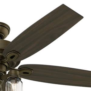 The Hunter Crown Canyon ceiling fan with lights has two blade sides.
