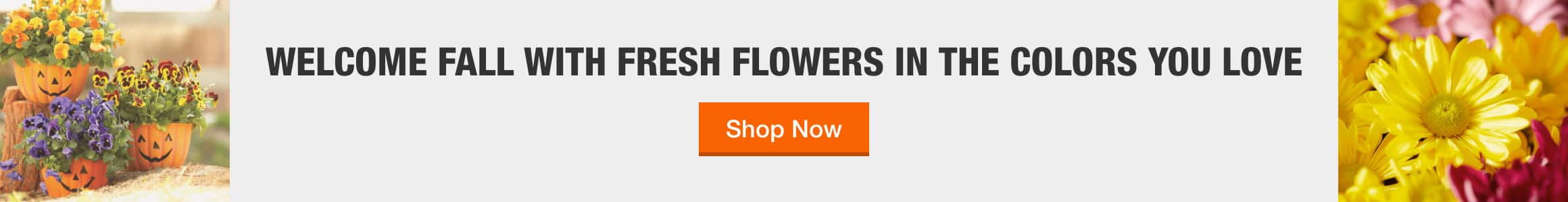 WELCOME FALL WITH FRESH FLOWERS IN THE COLORS YOU LOVE