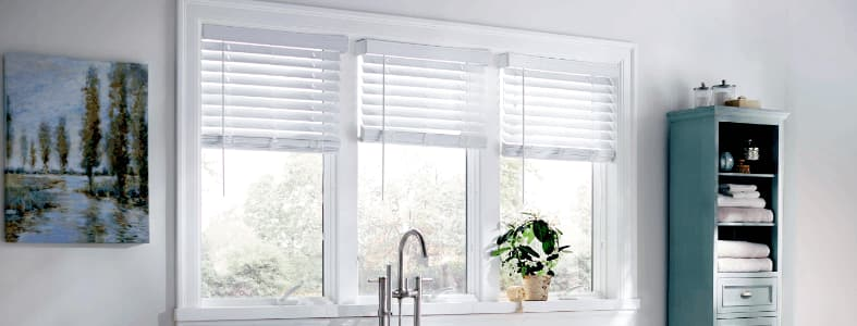 We can handle all your window replacement or install projects