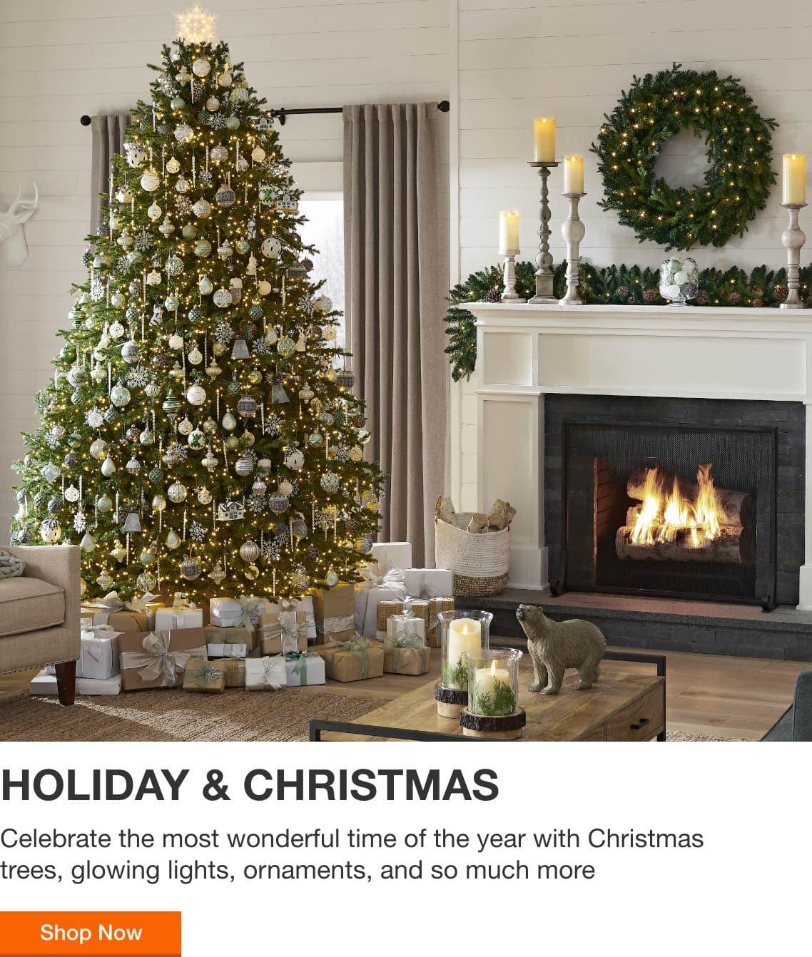 Holiday & Christmas