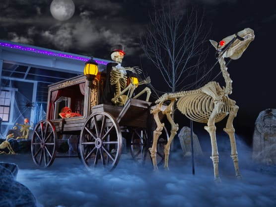 Halloween Yard Decor