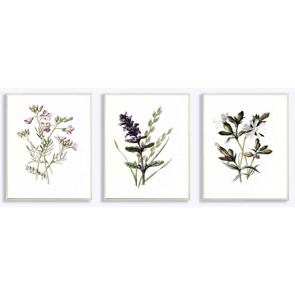 ''Purple and White Floral Botanical Illustrations'' by Artist Lettered and Lined Wood Wall Art(3-pieces)