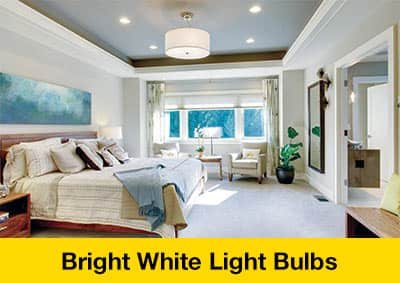 Bright White Light Bulbs