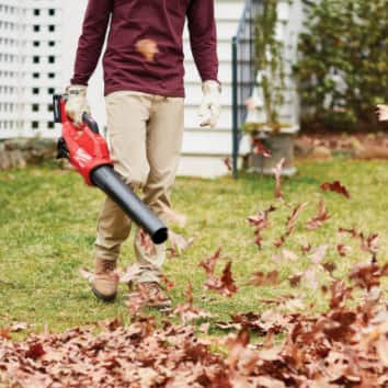 Yard Maintenance Guides