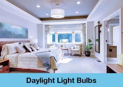 Daylight Light Bulbs