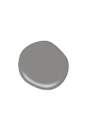 Falcon gray