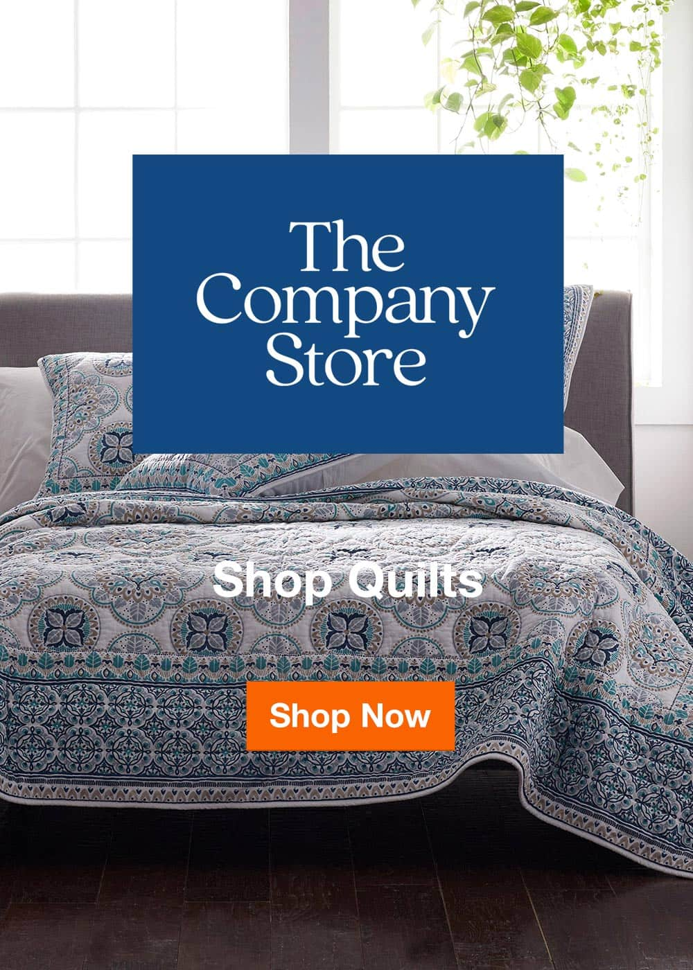 Shop Quilts