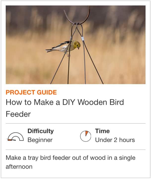 How to Make a DIY Wooden Bird Feeder