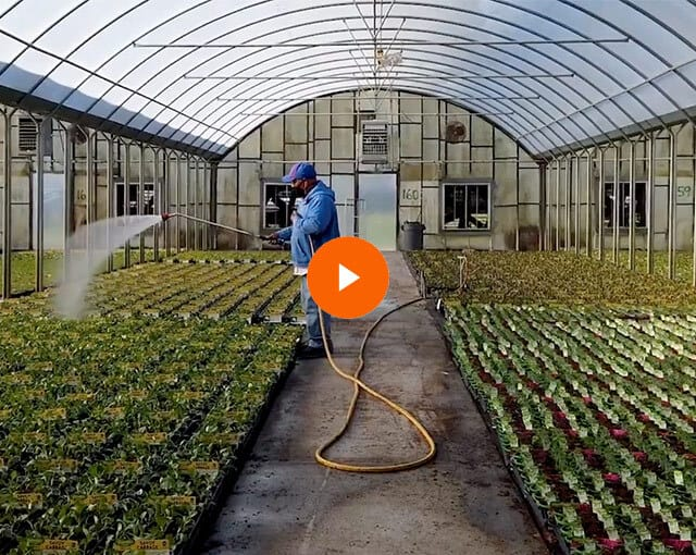 Virtual Field Trip to Bonnie Plants: Episode 1