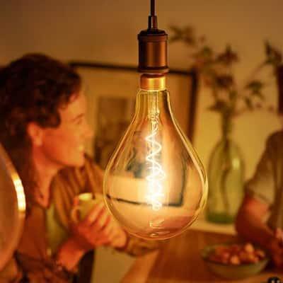Oversized Bulbs