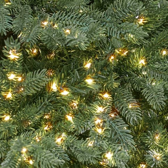 Trees with Micro Dot Lights