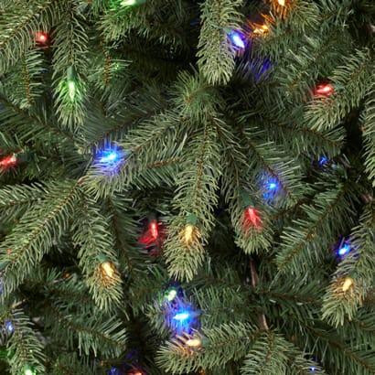 Trees with Mini Bulbs