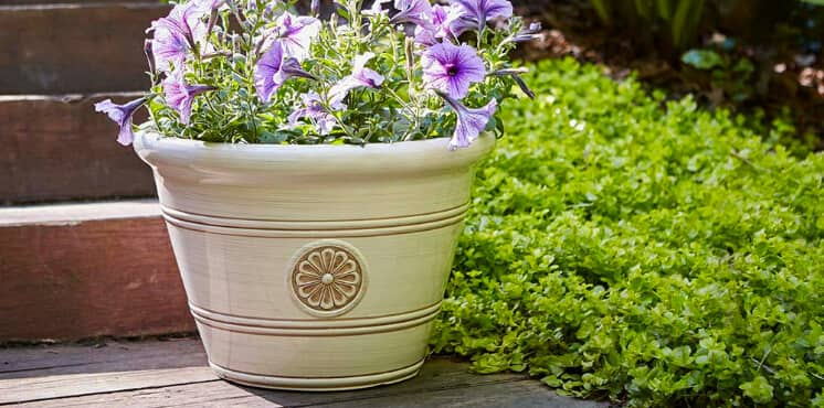 Cottage Style Pots and Planters