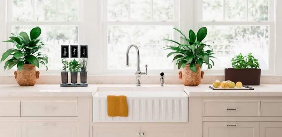 Countertop garden kitchen
