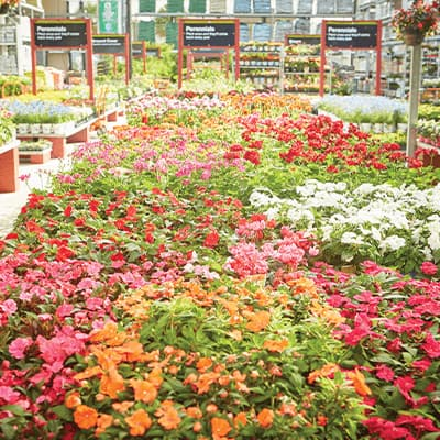 Garden Cenetr