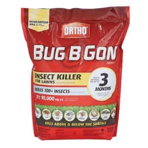 Bug B Gone
