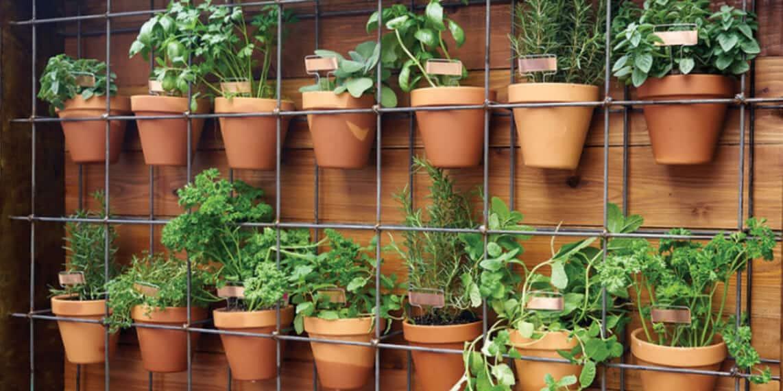 Make a Planter Wall