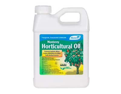 Organic lawn insect control