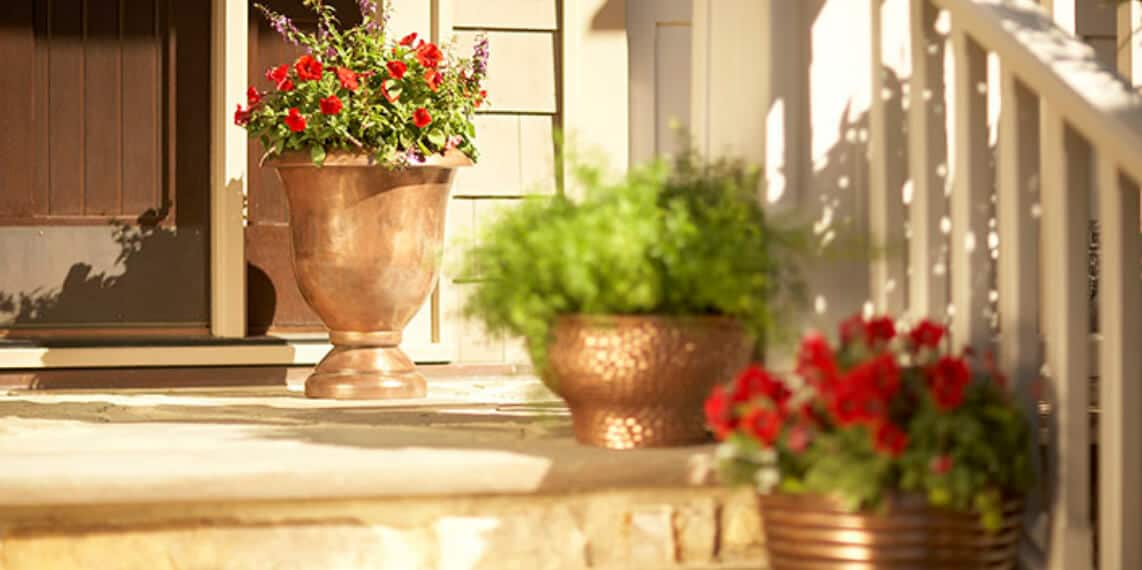 Planters Buying Guide