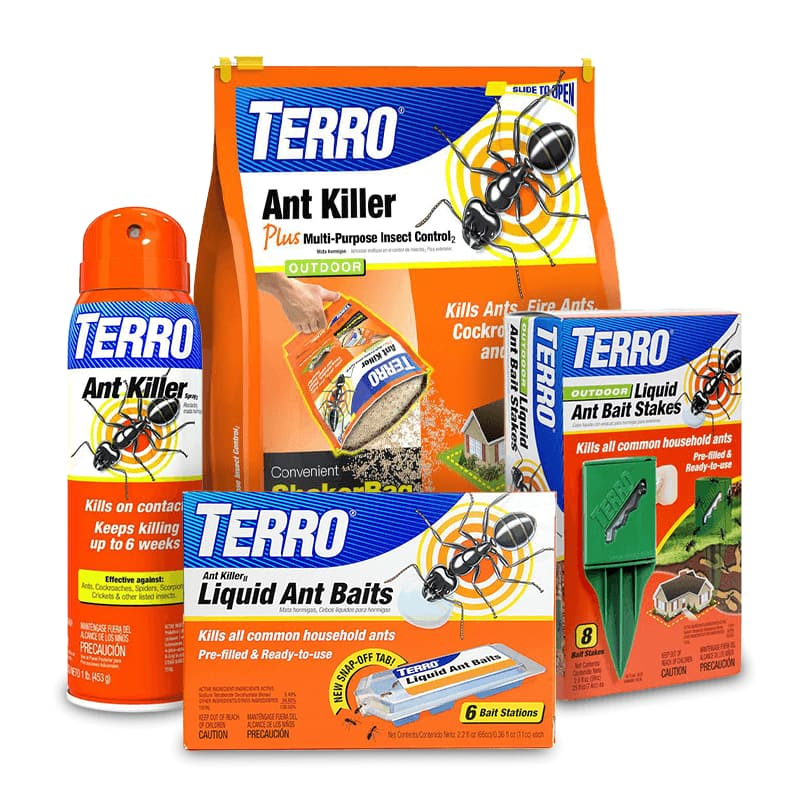 Home & Perimeter Insect Control