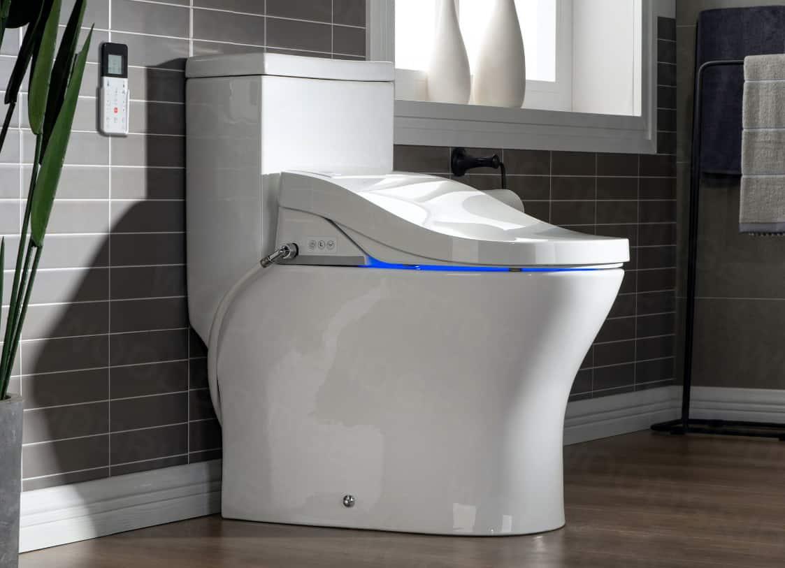 Freestanding Bidet Toilets