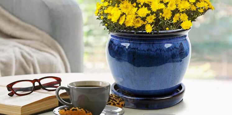 Traditional Style Pots and Planters